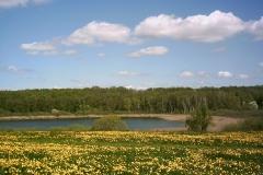 Der Karchower See im Frühling