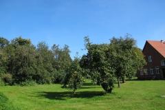 Obst und Garten